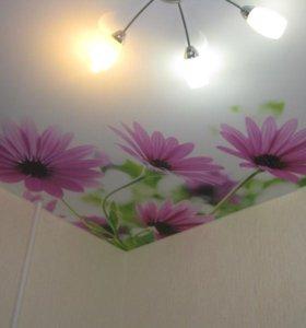 Натяжной потолок Mattfolie 3223