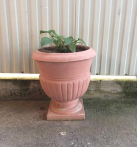 Цветочная бетонная ваза