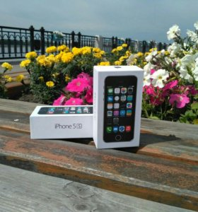 iPhone 5s. Гарантия