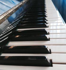Репетитор музыки / фортепиано, нотная грамота и др
