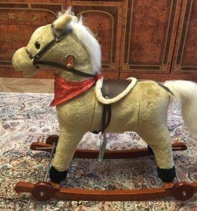 Лошадка-кочалка