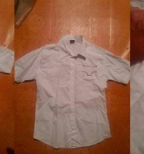 Молодежная рубашка, поло и шорты