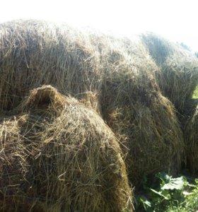 Рулоны сена