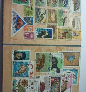 Коллекционный альбом марок