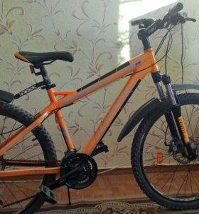 Велосипед forward Quadro 818