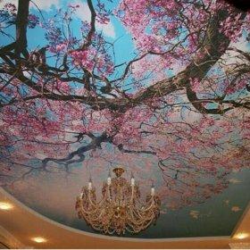 Варениковская потолок