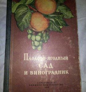 Плодово ягодный сад и виноградник