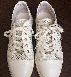 Обувь Кеды Dino Bigioni