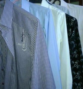 Рубашки, жилеты, брюки