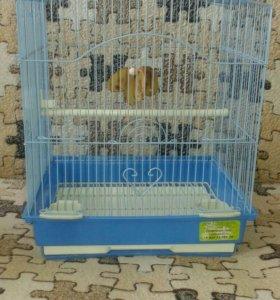 Клетка для птичек и гнездо