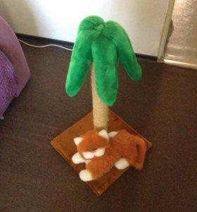 Пальма для котика