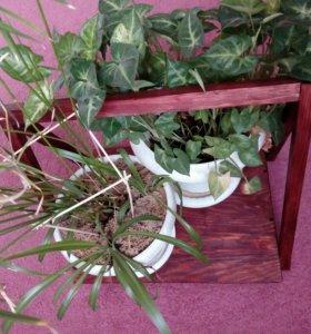 Подставка под растения