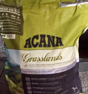 Сухой корм Acana