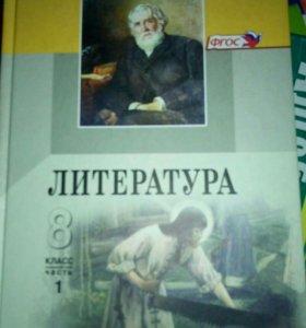 Литература. Беленький, Хренова 8 класс