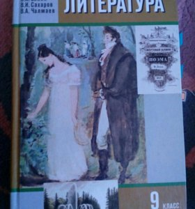 9 класс, учебник по литературе