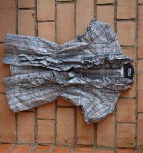 рубашки и блузки с коротким рукавом