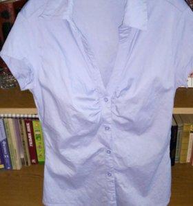 Блуза Terranova