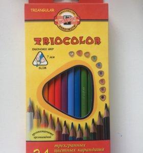 Трёхгранные цветные карандаши Triocolor 24 шт