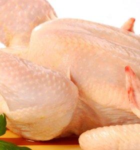 Курица домашняя