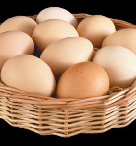 яйцо диетическое куриное