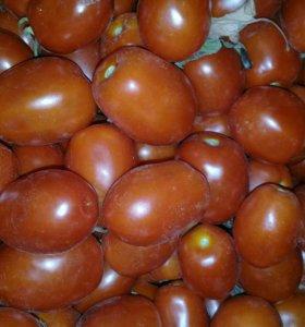 Продам помидор свежий