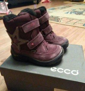 Демисезонние детские ботинки Ecco