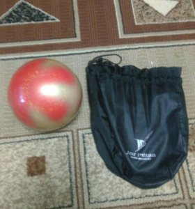 Мяч с чехлом
