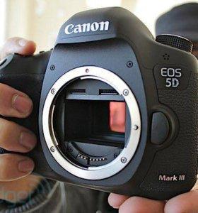 Canon 5D Mark3 body