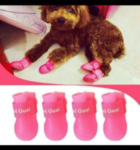 Ботиночки для собачек