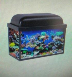 Аквариум Aquareon