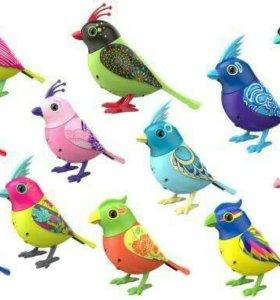 Музыкальная птица DigiBirds