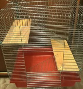 Клетка, 2 полочки, 2 лесенки металлические