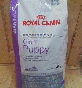Корм royal canin для крупных пород