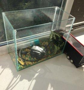 Аквариум и фильтр для воды
