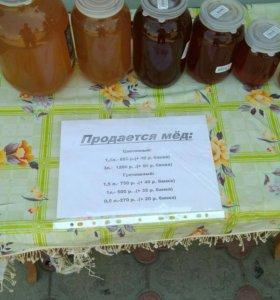 Мёд Цветочный и Гречишный