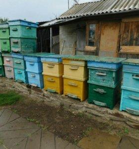 Ульи б/у для пчел