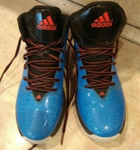Баскетбольная обувь Adidas