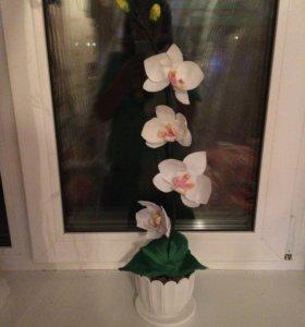 Орхидеи из фоамирана