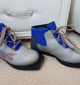 Ботинки лыжные Tempus