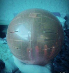 Прогулочный шар.