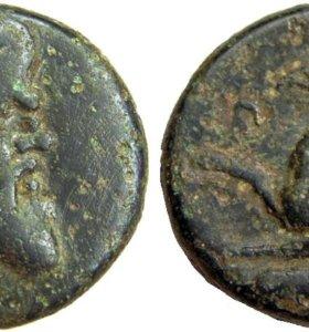 Тетрахалк, Пантикапей ( Античная монета)