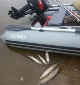 Лодка пвх+ Tohatsu 9.8
