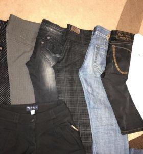Штаны, брюки, шорты, бриджи