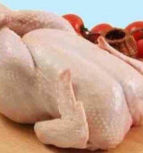 Мясо Цыплёнок бройлер охл