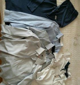 Рубашки и поло для школы.