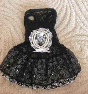 Платье для собаки (s)
