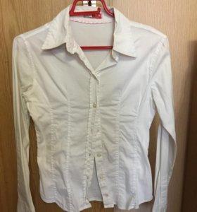 Молодёжные блузки и рубашки для школы