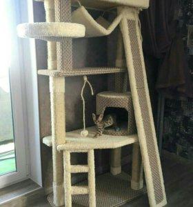 Когтеточки, домик для кошек
