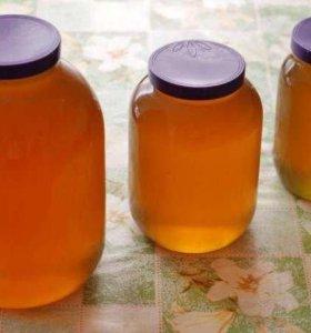 Мед домашний помидоры с грядки