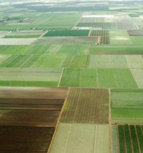 Участок, от 100 до 500 сот., сельхоз (снт или днп)
